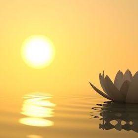 Heartfulness Meditation – A Scientific Approach To Spirituality