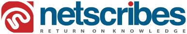 Netscribe Logo